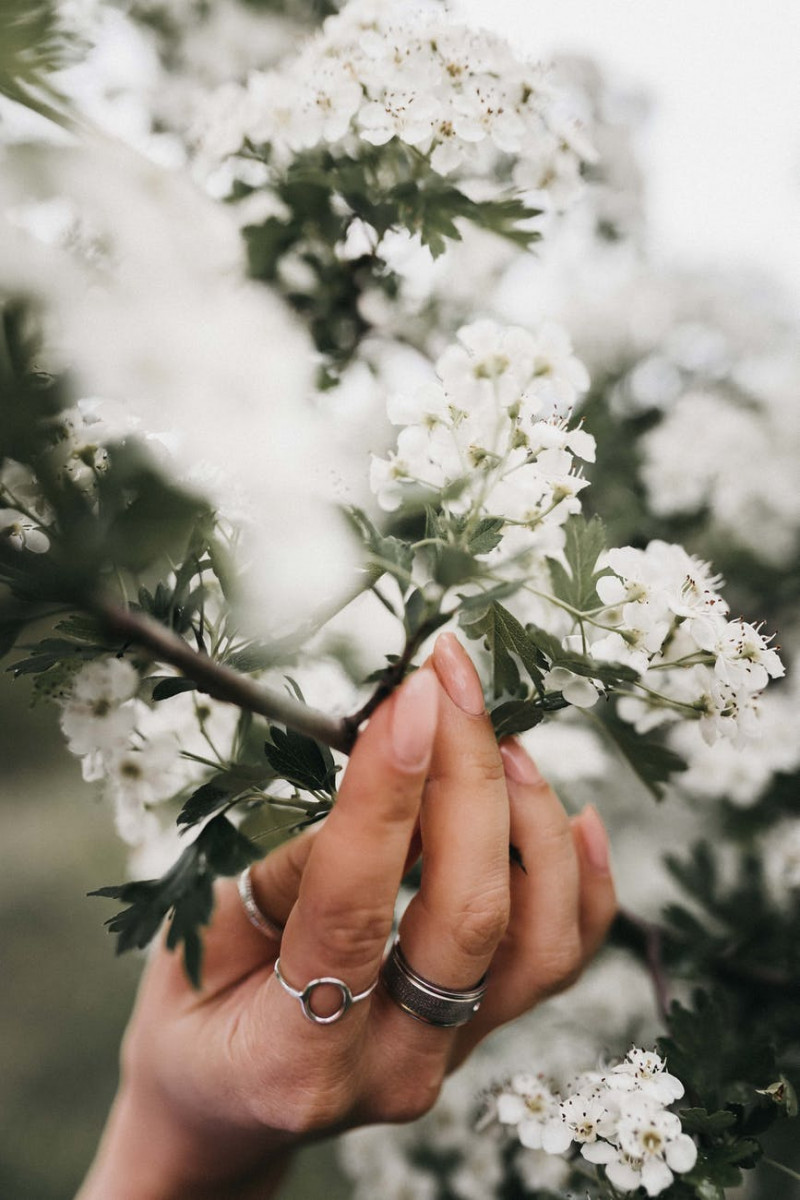 female touching blooming tree in daytime